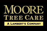 Moore Tree Care